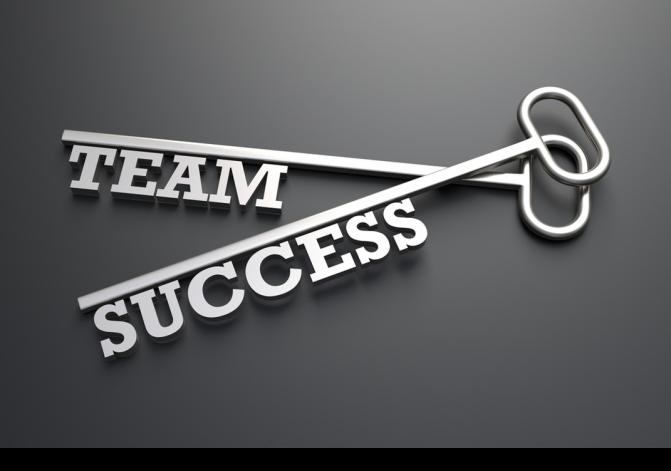 team-success